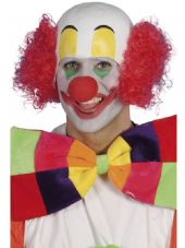 Funny Side Comedy Clown Wig